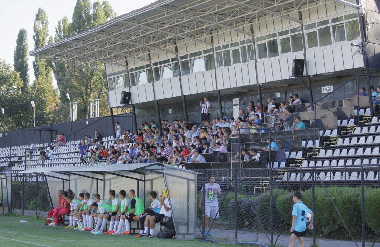 Stadion Sportul Studențesc / Viitorul Domnești